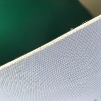 pvc塑胶地板 塑料地板厂家 2MM医院胶地板 学校地板供应
