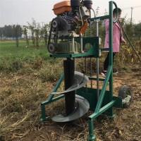 大棚专用打孔机 启航大棚支架打孔机 栽树挖坑机